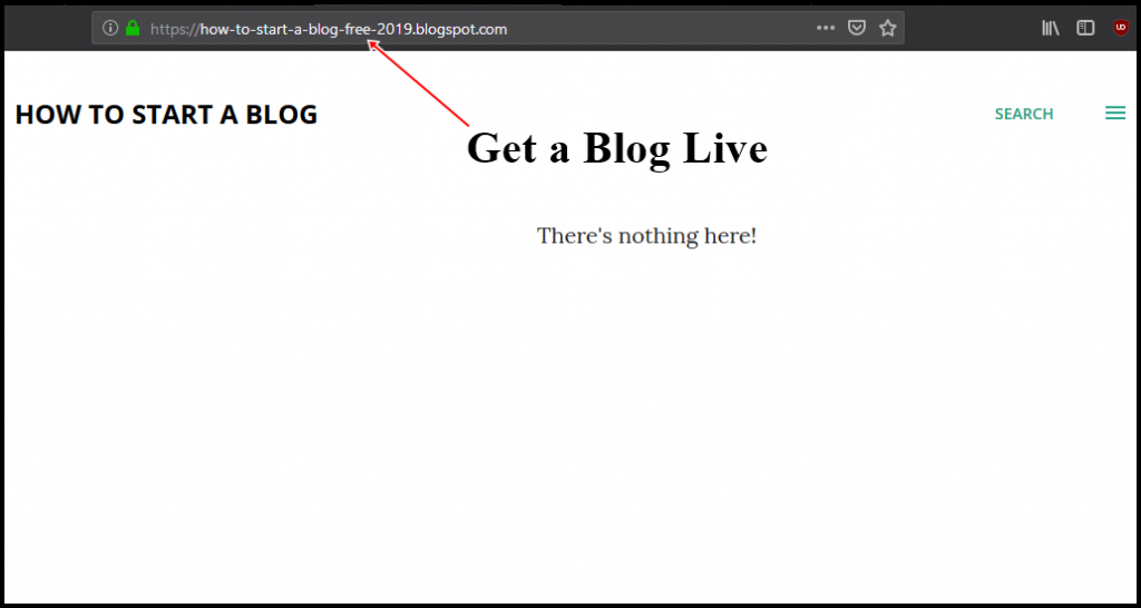 step 3 get blog online to Start a Blog